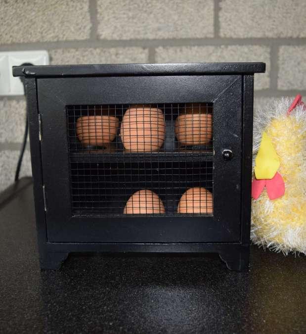 Sociale ruimte eieren